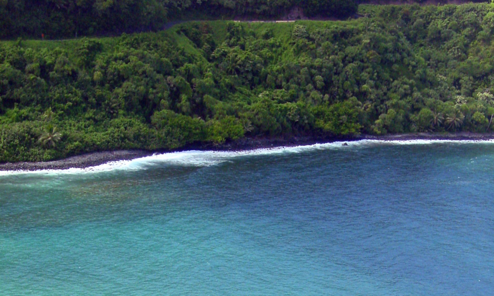 Hilo Brokers Hawaii Big Island Blog